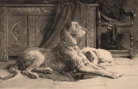 Herbert Dicksee Dog Etchings, Prints and Pictures