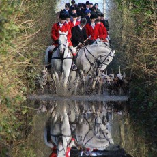 The Meath Hunt
