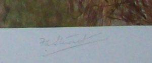 F.A. Stewart Print The Blackmore Vale Hunt Signature