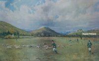 Tom Carr The Shropshire Beagles